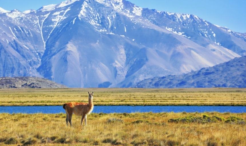 Patagonia River, Argentina