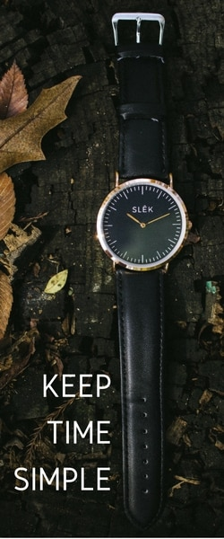SLEK 250x600 (6)