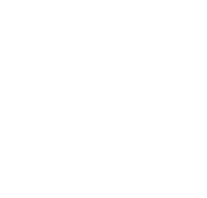 The Adult Man