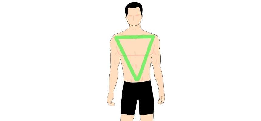 Inverted triangle male body type