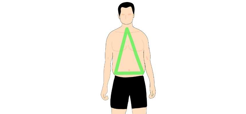Triangle male body type